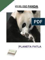 Reportaje Oso Panda