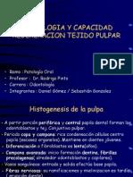 histologiadelapulpa