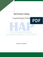 Mech Kaplan Prop Turbine Best Practice 1