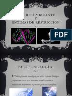 DNA recombinante y enzimas de restriccion.pptx