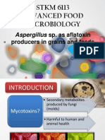 Aspergillus sp as Aflatoxin Producers in grains and feeds