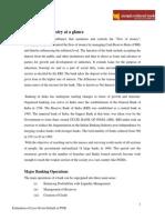 Pnb Project Report