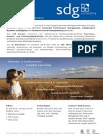 SDG Consulting AG Factsheet