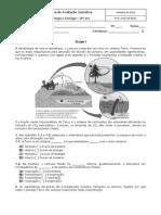 BG10_T1a.pdf