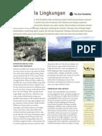 EnvironmentalGovernance2012BAHASA.pdf