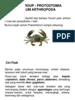 Paleontologi10