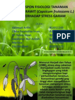presentasi project stress garam KEL 5.pptx