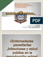 Sanidad Animal (Enfermedades Parasitarias e Infecciosas)