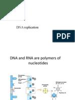 Curs 4 Replicarea ADN