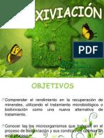 DIAPOSITIVAS BIOLIXIVIACION H1