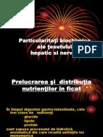 Particularitati Metabolice