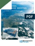Www.bornemann.com Assets Produkte Multiphase-Boosting Broschre BornemannMultiphase