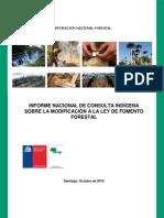INFORME NACIONAL DE CONSULTA INDÍGENA  1370540820InformeNacionalConsultaIndigena