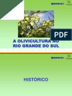 A Olivicultura No Rio Grande Do Sul
