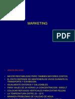 g Marketing