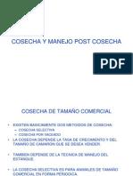 F COSECHA