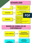 Bioanalisis FG 2008-2
