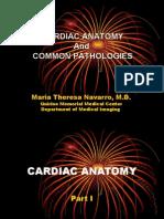 Cardiac Anatomy and Common Pathologies