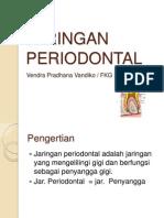 Jaringan Periodontal