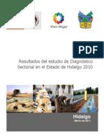 Informe Final Diagnostico Sectorial Estado de Hidalgo