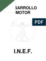 DESARROLLO MOTOR.pdf
