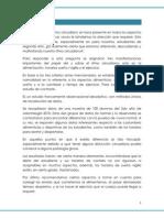 52020124 Estudio Sobre El Ritmo Circadiano Alimentacion Sueno y Ejercicio