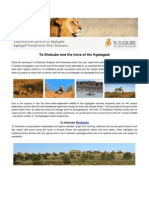 Ta Shebube and the Lions of the Kgalagadi