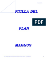 Plan Magnus