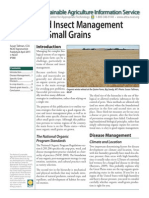 Small Grain Disease