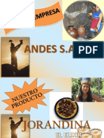 35004164 Marketing Proyecto Final Jorandina [Reparado]