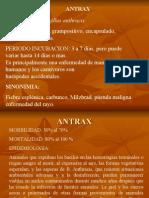 antrax-emilio