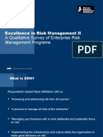 Excellence in Risk Management