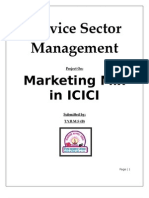 Marketing Mix in ICICI