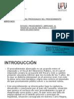 Presentacion Derecho Procesal Penal