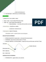 Oral Anatomy Notes
