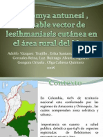 Vector Leishmania