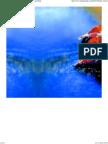 Berger Paints _ Expert Paiting Services - Professional Help