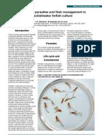 Kpj10 Crustacean Parasites Aquaculture Asia[1]