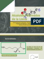 Alcaloides Derivados de La Lisina