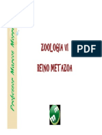 Zoologia Vi - Reino Metazoa - Artrpodes Modo de Compatibilidade