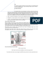 mikroba penyakit pulpa
