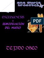 cdocumentosgloriaunibrsidadhistowebosteognesisyremodelado-090605105247-phpapp01