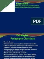 Exposición  Estrategias Pedagógicas-Curriculares