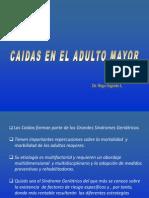 CAIDAS AM2013