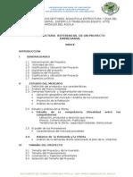 Guia Proyecto-plan Pymes