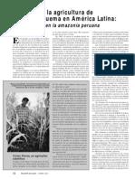 Alternativas a La Agricultura de Tala y Quema en Al