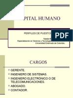 Capital-humano - Perfiles de Puesto