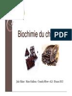 Biochimie Chocolat