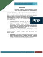 Trabalho de Ambientes de Internet Oficial.pdf