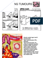 Copy of Lung Tumours - Copy